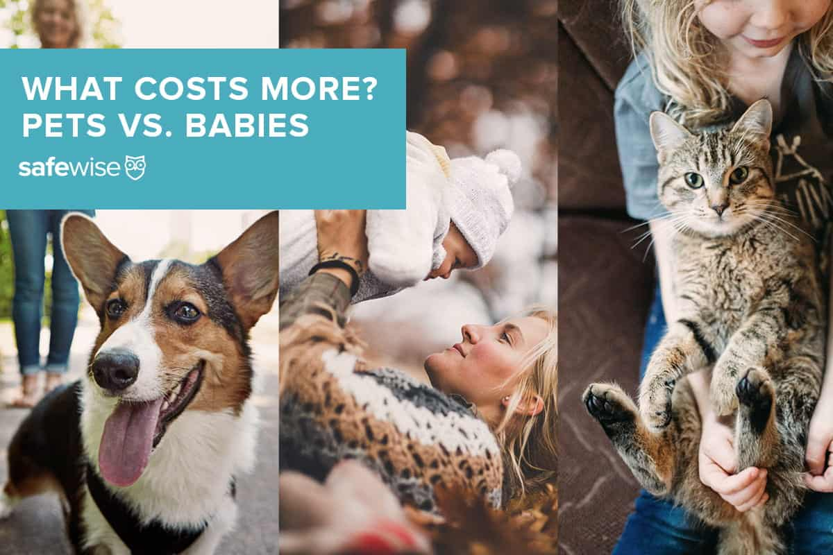 What Expenses More? Pets vs. Babies