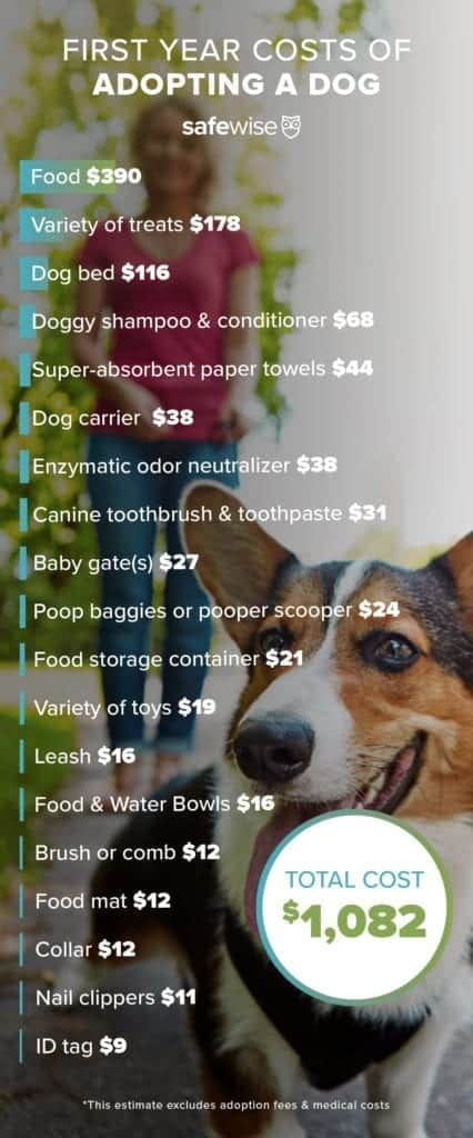 infograph of dog costs