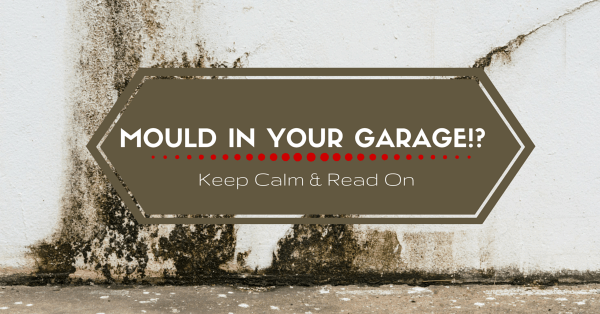 Dealing with Mould in Your Garage? Keep Calm and Read On
